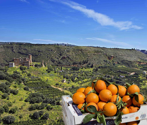 Arance Di Ribera DOP con vista del Castello di Poggiodiana di Ribera